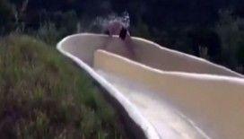 Su kayağı yaparken inanılmaz kaza