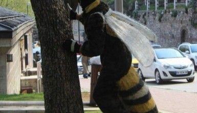 Bu arı Canan Karatay'ı sokmak istiyor