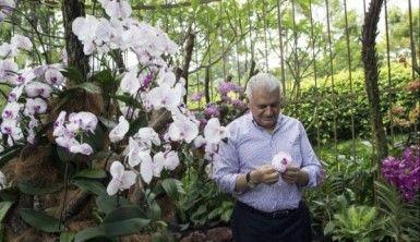 Başbakan Yıldırım'ın adı orkide türüne verildi