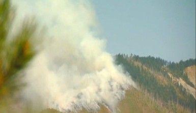 Gürcistan'daki yangın büyüyor