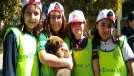 Dünya Sokak Hayvanları Günü Gaziantep'te kutlandı