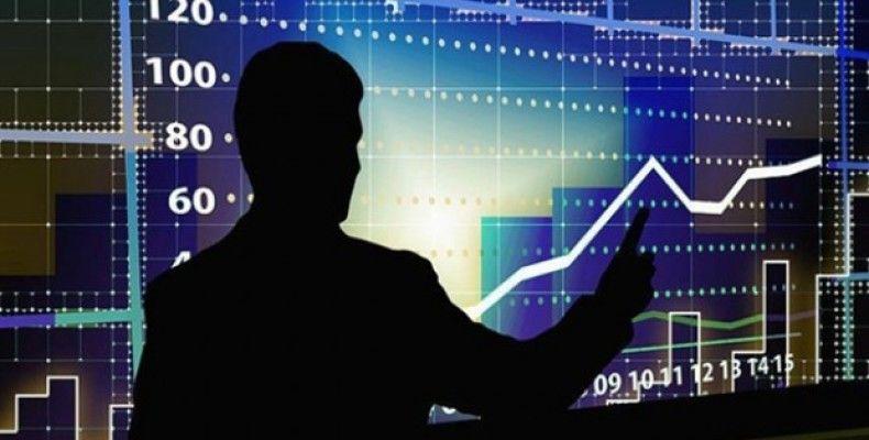 Devlet-Özel Sektör Ekonomi dengesi