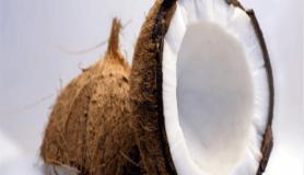 Hindistan cevizinin sağlığa faydaları