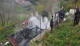 Sinop'ta ahır yangını, 5 hayvan telef oldu