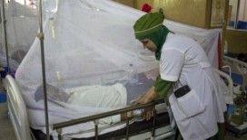 Bangladeş'te 24 saatte 403 kişi Dang hummasından hastaneye kaldırıldı