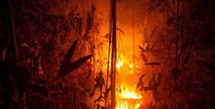 Brezilya, Fransa'nın Amazonlara yardımını resmen reddetti
