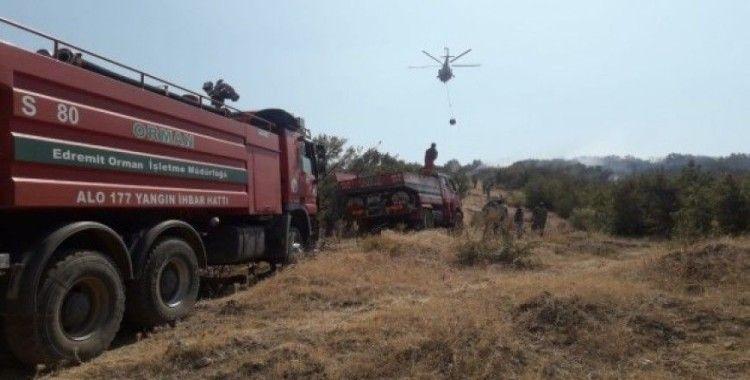 Balıkesir'de makilik alan yangını