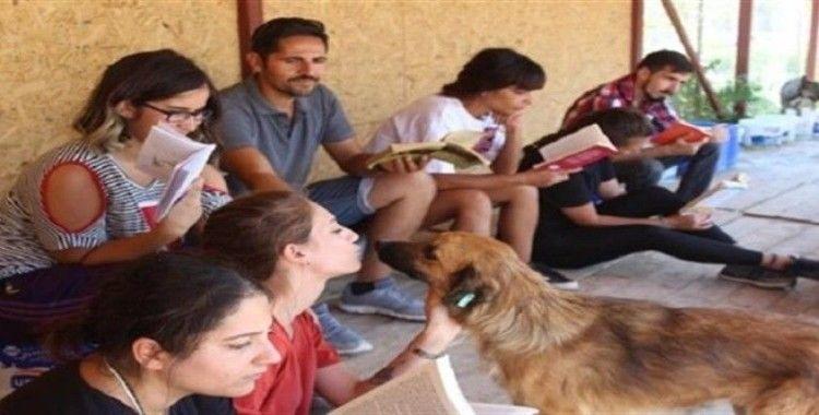 Kampiz üyeleri, hayvan barınağında kitap okudu