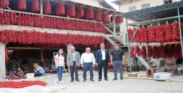 150 yıldır aynı tohumdan acı kırmızı biber üretip kurutuyorlar