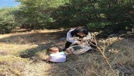Çanakkale'de 2 günde 353 kaçak göçmen yakalandı