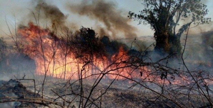 Tekirdağ'da orman yangını: Helikopter, arazöz ve itfaiyeler müdahale ediyor