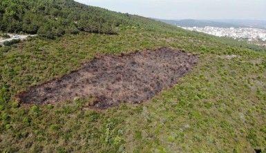 Kundaklama sonucunda yanan ormanlık alandaki tahribat havadan görüntülendi
