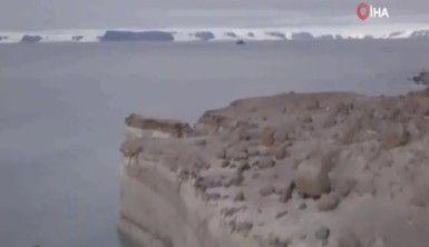 Rusya, buzullar eriyince 5 yeni adaya sahip oldu