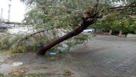 Ağaçlar kırıldı, yollar göle dündü