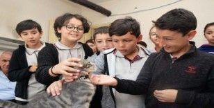 Öğrenciler sokak hayvanlarını unutmadı