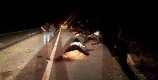 Tuzluca'da koyun sürüsüne otomobil çarptı