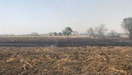 Şehrin üstündeki dumanın anız yangınlarından çıkan duman olduğu belirlendi