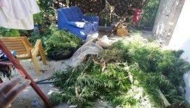 Hatay'da uyuşturucu operasyonu: 1 gözaltı