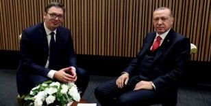 Sırbistan ile ekonomik ilişkiler masaya yatırılacak