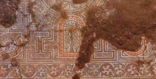 Kaçak kazıda bulunan mozaik gün ışığına çıkarılıyor