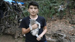 Kastamonu'da uçurumdan yuvarlanan kamyon alev alev yandı: 3 ölü