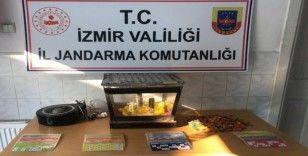 Aranan 14 kişi yakalandı, kumar oynatılan yerlere göz açtırılmadı