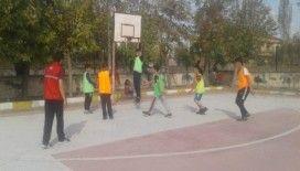 Acıgöl'de basketbol sokağa indi