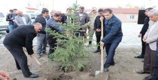 Şehit Eren Öztürk anısına ağaç dikme etkinliği