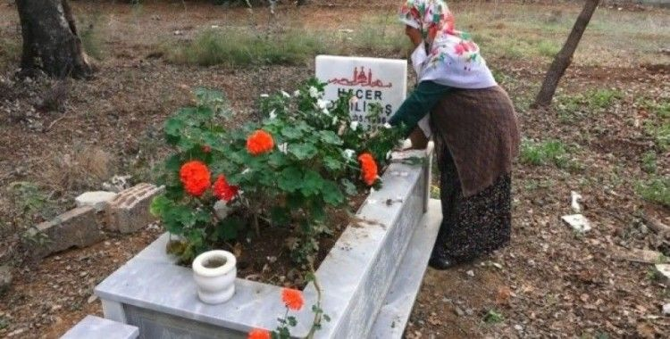 Antalya'da mezarlıktaki kabrin kazılıp etrafına kenevir ekildiği iddiası