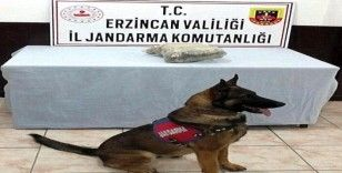 Erzincan'da 875 gram kubar esrar ele geçirildi