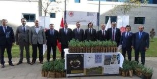 Anadolu Adalet Sarayı'nda 500 fidan toprakla buluştu