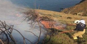 Makilik alanda yangın