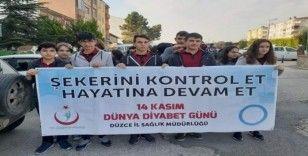 """Gümüşova'da """"Dünya diyabet günü"""" yürüyüşü düzenlendi"""
