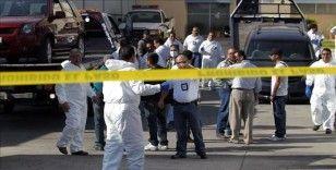 Meksika'da 52 çantadan 25 ceset çıktı