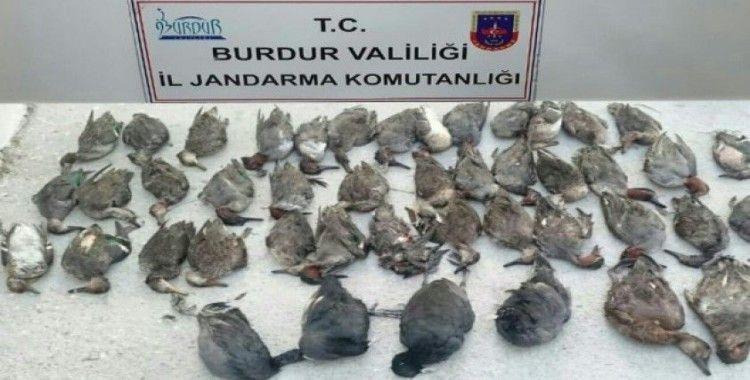 Ördek avcısına 18 bin 996 lira ceza
