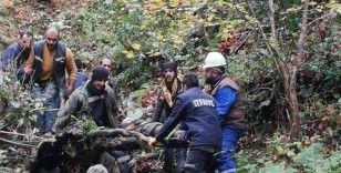 Traktör 300 metre uçuruma yuvarlandı: 1 ölü
