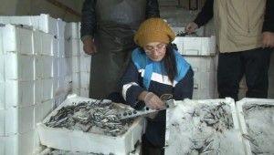 Ankara'daki balıkçılara gece denetimi