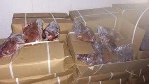 Çin'den getirilen kaçak 23 ton kuzu ciğeri yakalandı
