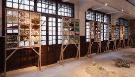 Tarihi Yarımada'dan Adalar'a İstanbul Bienali
