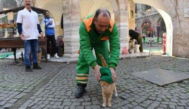 'Çizmeli' değil, 'Bereli' kedi
