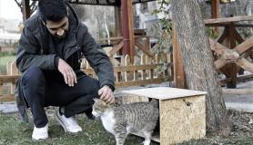 'Kediler üşümesin' diye kedi evleri yapıp tüm şehri donattılarMesaj yazın