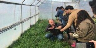 Bafra Dedeli Tarım Meslek Lisesinde döner sermaye işletmesi kuruldu