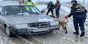 (özel) Jandarma trafik ekiplerinden köpekli trafik uygulaması