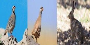 Erzincan'da tüm avlaklarda av yasağı başladı