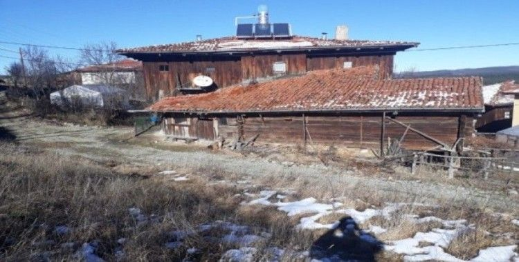 Kastamonu'da köpeği öldürdükten sonra üç evi de soydular