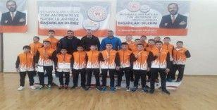 Analig Güreş Takımı Türkiye Finallerinde