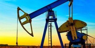 Belarus, Rus petrolüne karşı birçok ülkeden teklif istedi