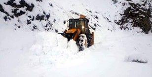 Siirt'te köy yolunda mahsur kalan koyun sürüsü kurtarıldı
