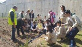 MEB'in ilk Kalite Yönetim Sertifikası Hasan Polatkan Ortaokulu'na verildi