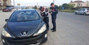 Jandarma 12 aranan şahsı ele geçirdi